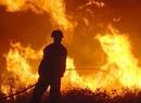 Pędząca ściana ognia w Teksasie