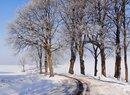 Lodowate oblicze zimy